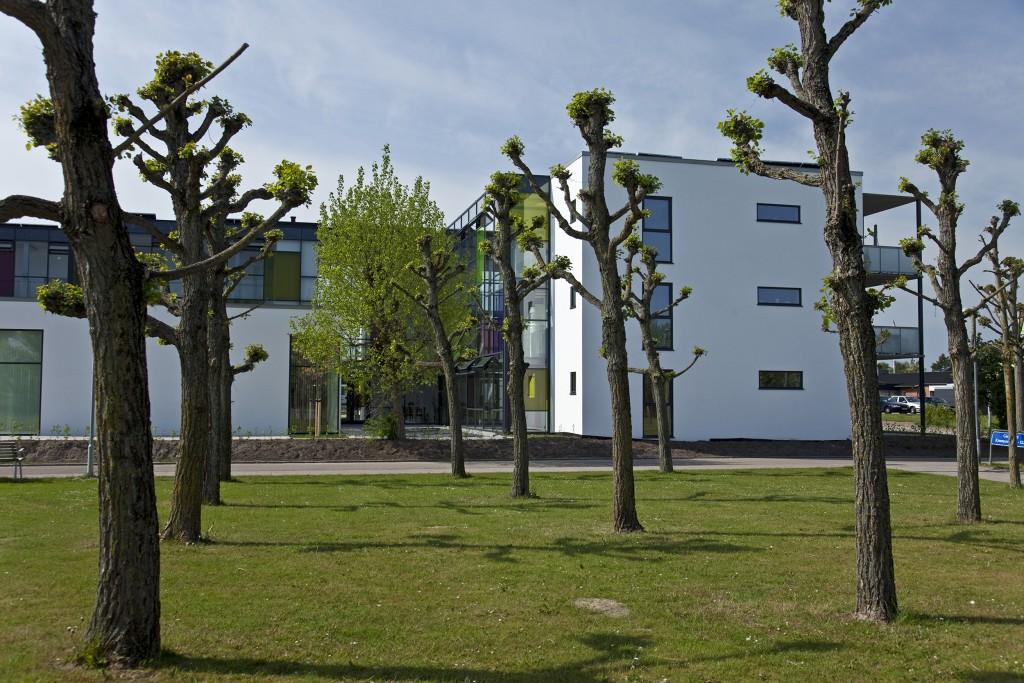 bebyggelsen med eks. beplantning_foto Signe Find Larsen