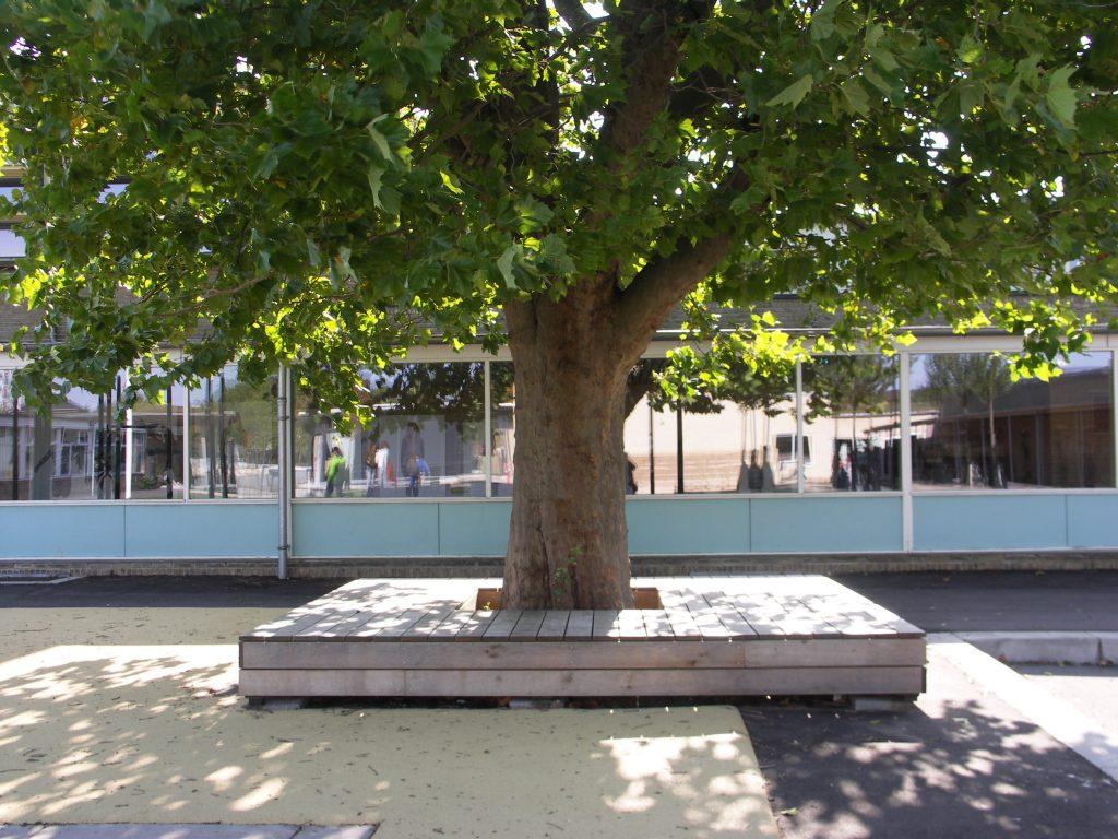 eks. træ med ny bænk_foto Lisa Als Klein