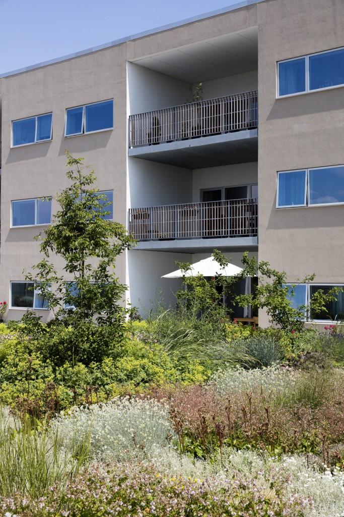 Fælles gårdhave for plejecenteret_foto Torben Eskerod