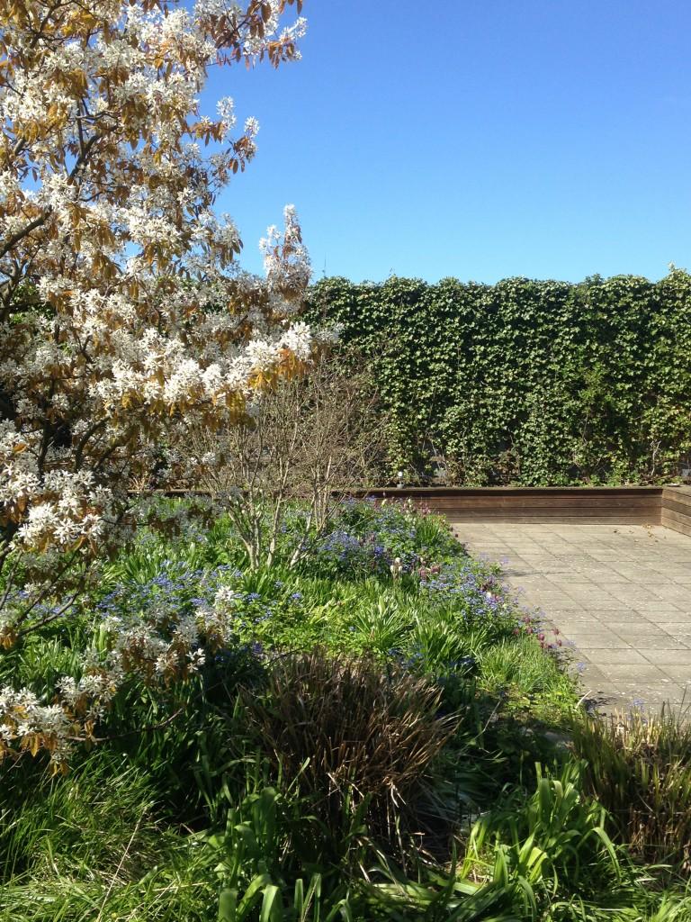 Haven i april_foto JJW